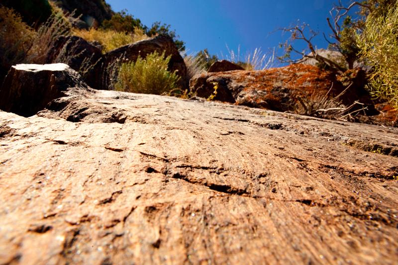 Hike to Ryan Mountain at Joshua Tree National Park
