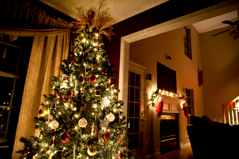 Our 2011 Christmas Tree with Ornaments