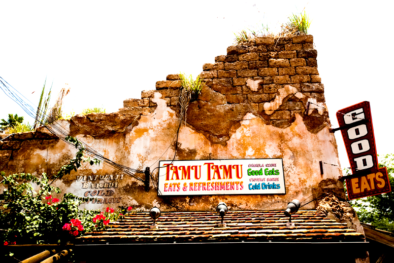 Animal Kingdom in Disney World.  Orlando, FL
