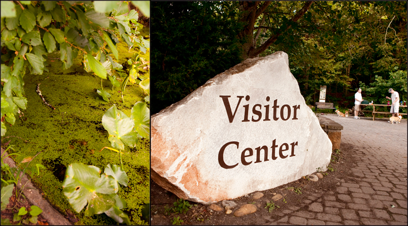 Visitor Center sign at Ijams Nature Center