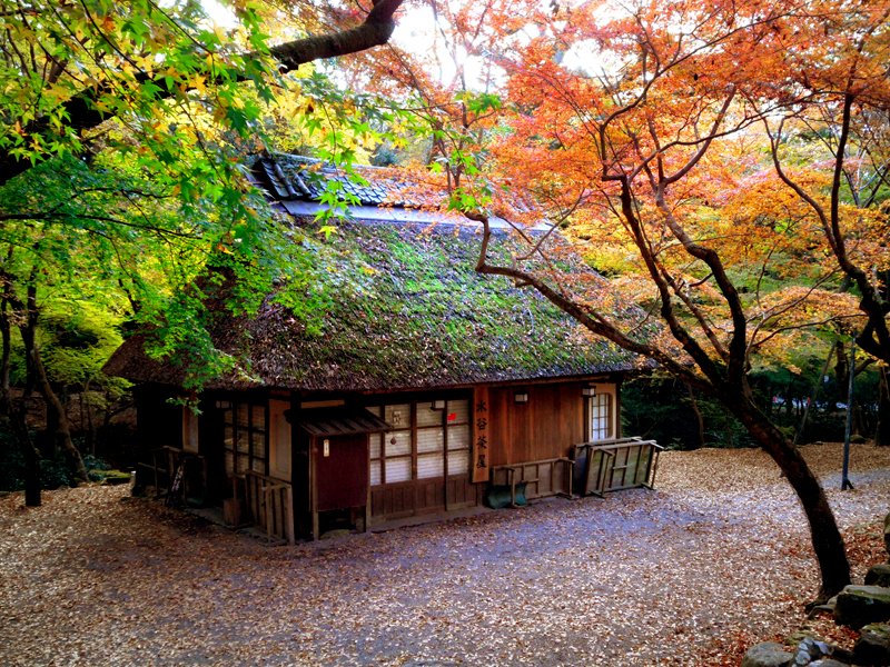 nara park thatched house