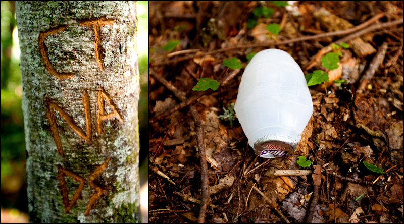 Litter and vandalism on Ramsey Cascades trail