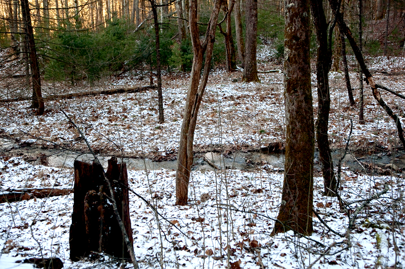 Rich Mountain Loop Trail in the winter - Cades Cove in the Smoky Mountains