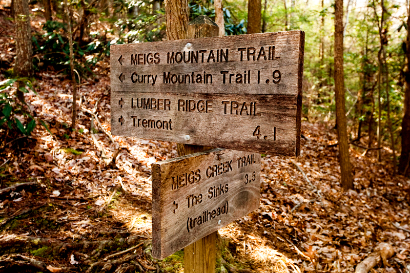 Lumber Ridge Trail Hike Smoky Mountains