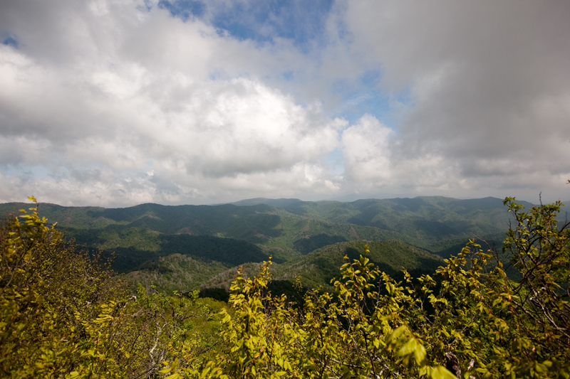 Smoky Mountains Hike to Siler's Bald