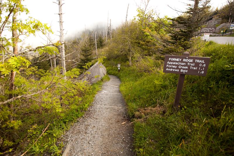 Smoky Mountains Hike to Siler's Bald