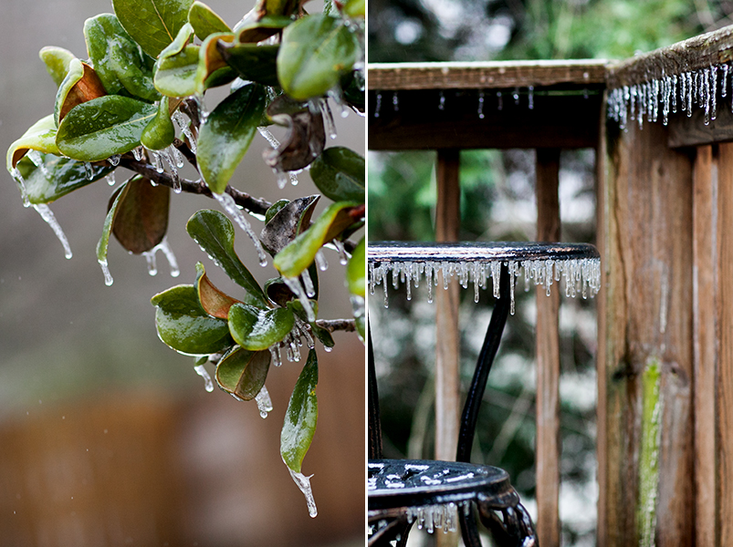 Knoxville Tennessee Ice Storm January 2013