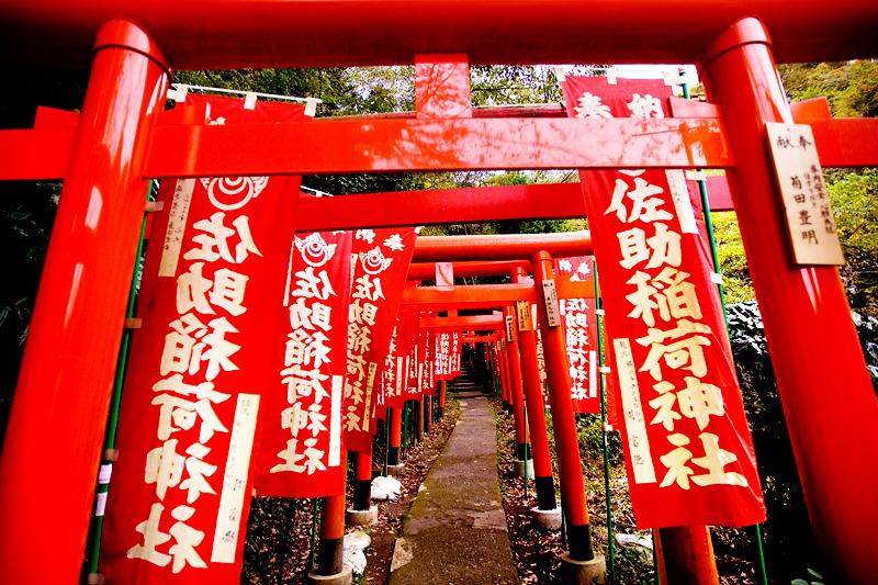 kamakura sasuke inari shrine