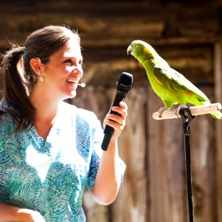 Animal Kingdom – Flights of Wonder Show