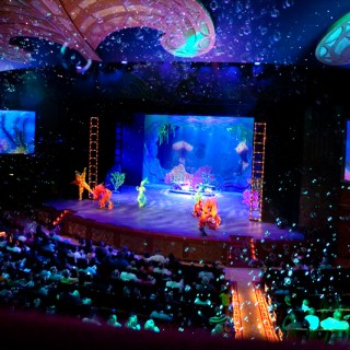 Disney Dream Cruise | Bahamas | Theater Shows