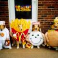 dog-costume-6