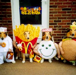 31 Days of Halloween #12: Dogs in Costume