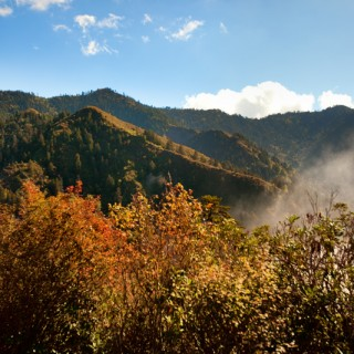Hike to Mt. LeConte!
