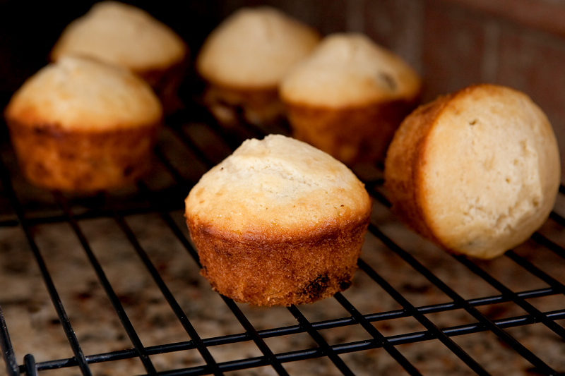 chocolate-chip-candied-ginger-muffins-2