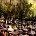 nara_13_kasuga_taisha_stone_lanterns