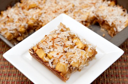 pear-apple-coconut-bars-2