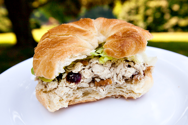 croissant with honey pecan cranberry chicken salad