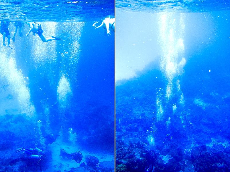 disney-fantasy-cruise-western-caribbean-snorkeling-in-cozumel-19