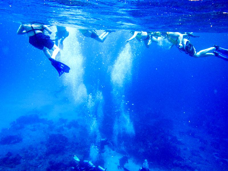 disney-fantasy-cruise-western-caribbean-snorkeling-in-cozumel-20
