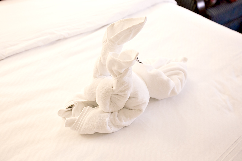 disney rabbit towel animal