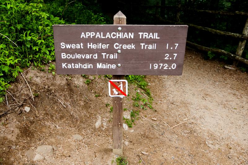 smoky-mountain-hiking-trails-charlies-bunion-01