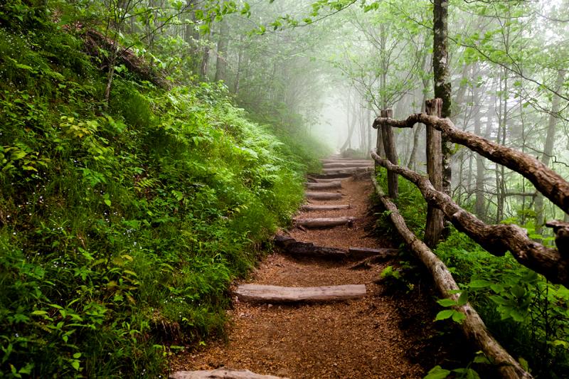 smoky-mountain-hiking-trails-charlies-bunion-03