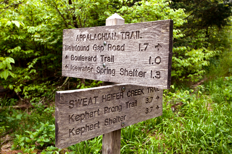smoky-mountain-hiking-trails-charlies-bunion-10