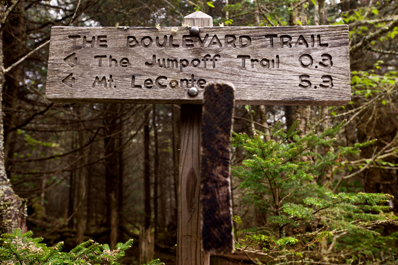 smoky-mountain-hiking-trails-charlies-bunion-13