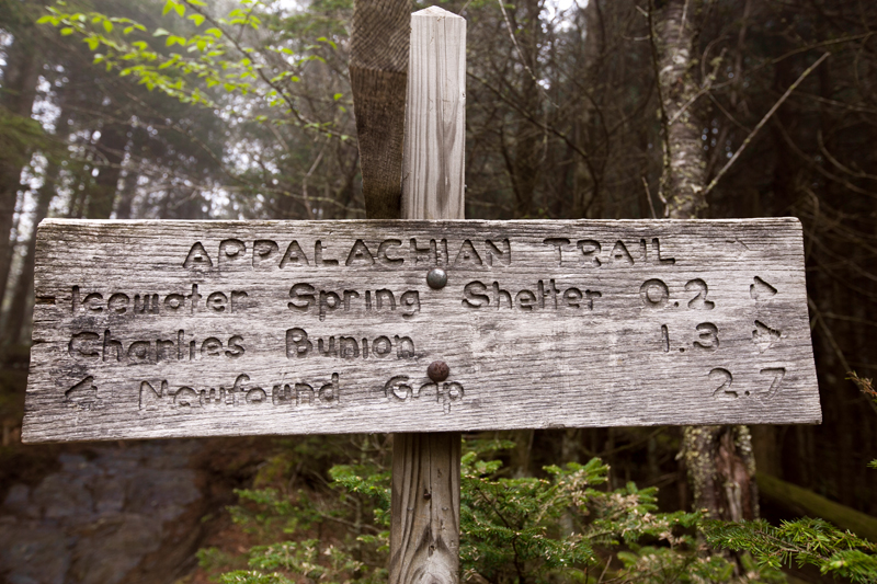 smoky-mountain-hiking-trails-charlies-bunion-14