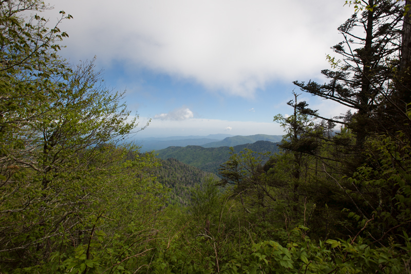 smoky-mountain-hiking-trails-charlies-bunion-19