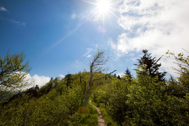 smoky-mountain-hiking-trails-charlies-bunion-21
