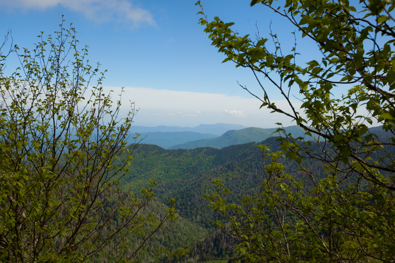 smoky-mountain-hiking-trails-charlies-bunion-22