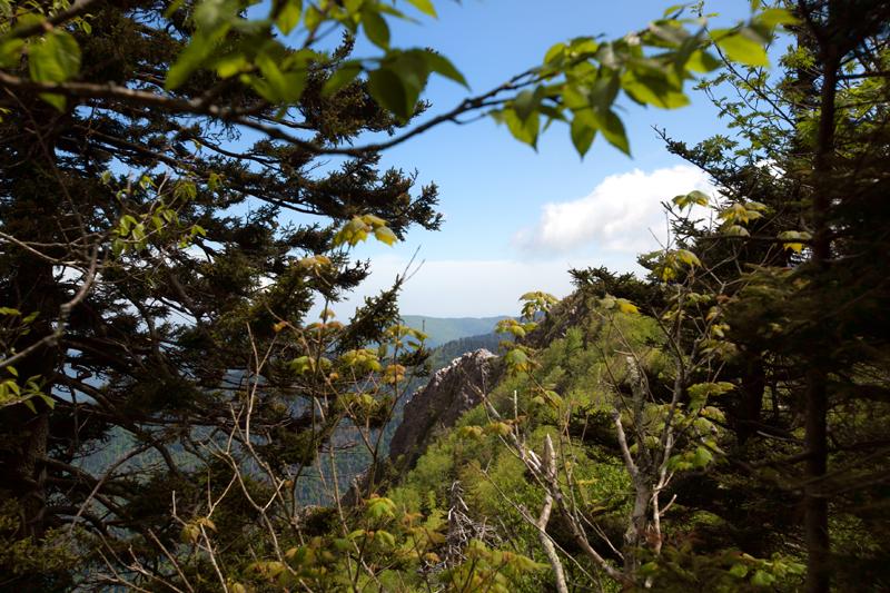 smoky-mountain-hiking-trails-charlies-bunion-25