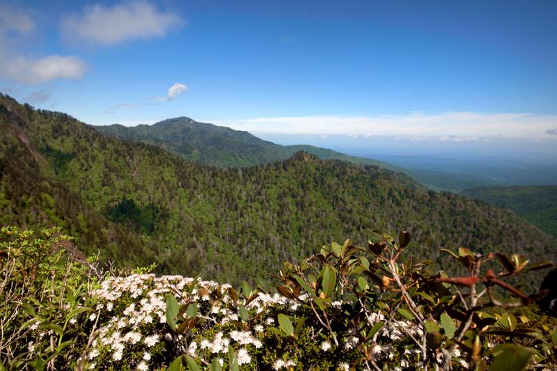 smoky-mountain-hiking-trails-charlies-bunion-29