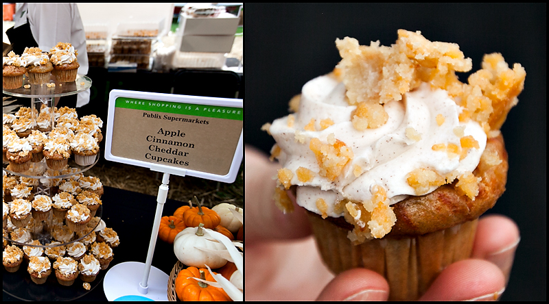 cupcakes-in-the-park-knoxville-2013-16