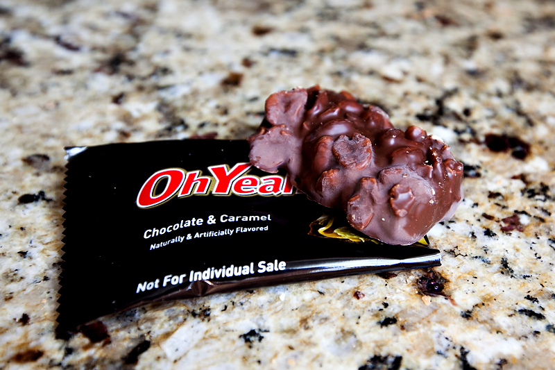 review-of-oh-yeah-chocolate-caramel-protein-bars-01
