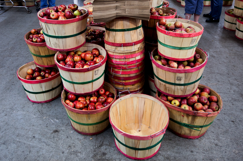 carver's-apple-orchard-cosby-tennessee-11