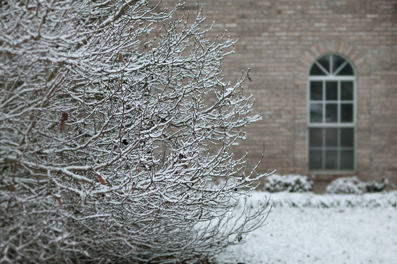 knoxville-tennessee-first-snow-2013-09