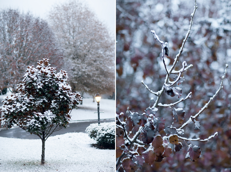 knoxville-tennessee-first-snow-2013
