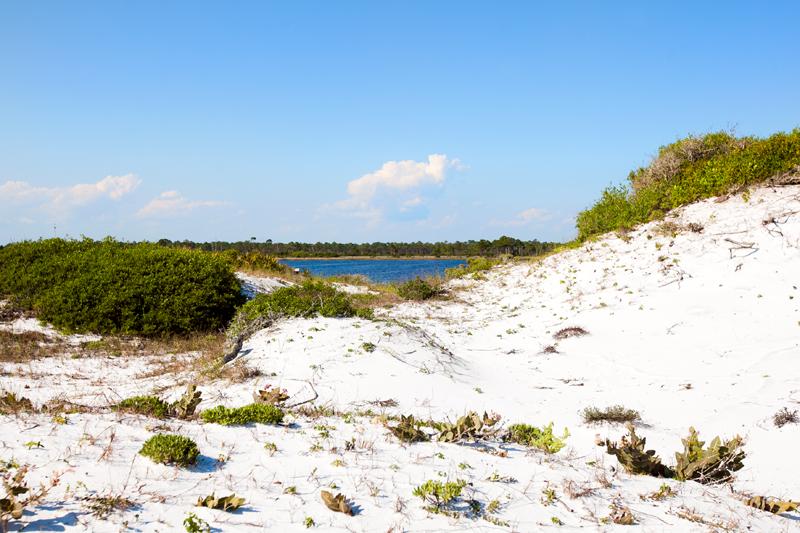 dog-friendly-hiking-in-florida-grayton-beach-01