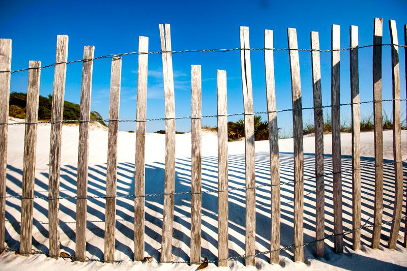 dog-friendly-hiking-in-florida-grayton-beach-10