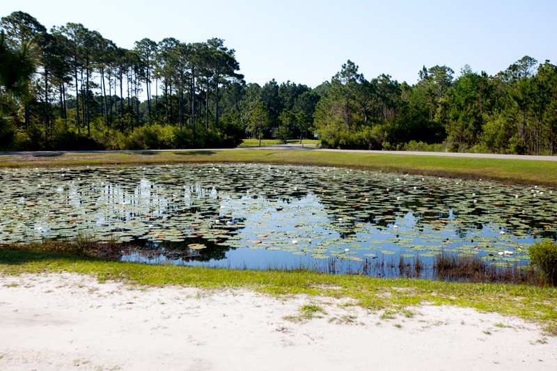 topsail-hill-preserve-state-park-hiking-01