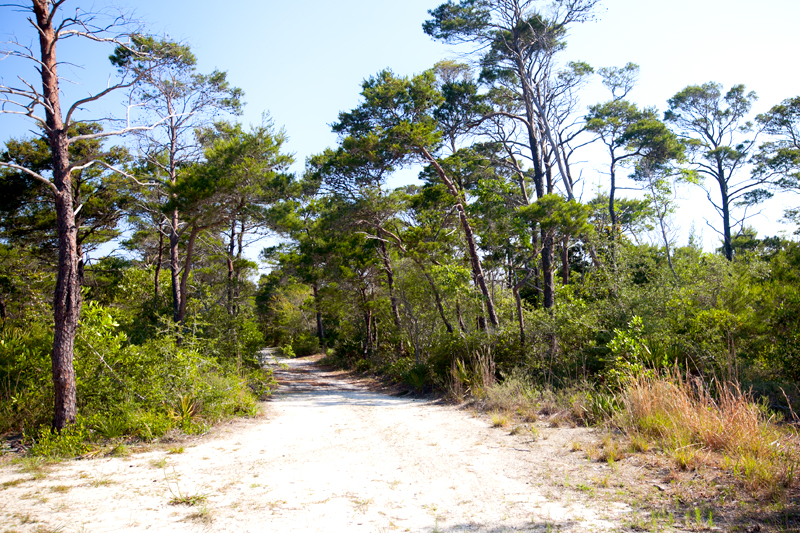 topsail-hill-preserve-state-park-hiking-02
