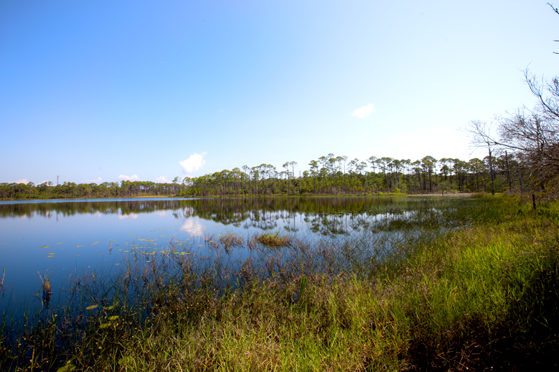 topsail-hill-preserve-state-park-hiking-05