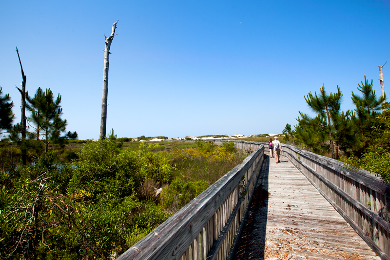 topsail-hill-preserve-state-park-hiking-06