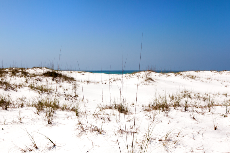 topsail-hill-preserve-state-park-hiking-12