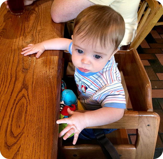 baby-first-time-in-restaurant-high-chair