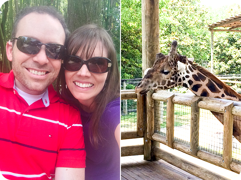 matt-and-erin-at-zoo-with-giraffe