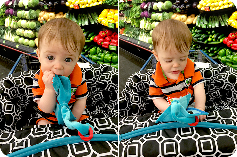 shopping-cart-cover-with-7-month-old