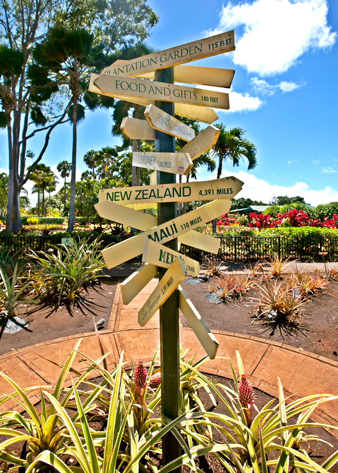 street sign at dole plantation